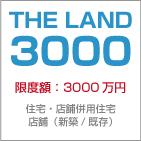 TheLand3000